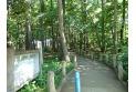 【公園】西原自然公園 約50m