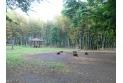 【公園】たけのこ公園 約610m