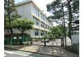 【小学校】上石神井小学校 約800m
