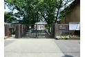 【小学校】石神井西小学校 約300m