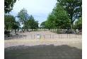 【公園】武蔵野中央公園 約670m