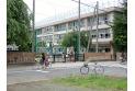 【小学校】石神井台小学校 約780m