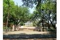 【小学校】第二小学校 約600m
