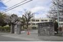 【小学校】立川市立新生小学校 約750m