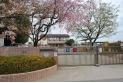 【幼稚園・保育園】所沢第六文化幼稚園 約530m
