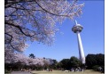 【公園】所沢航空記念公園 約570m