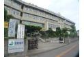 【中学校】加治中学校 約950m