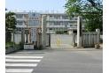 【小学校】大東東小学校 約240m