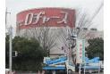 【スーパー】ロヂャース川越店 約500m