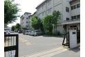 【小学校】中央小学校 約380m