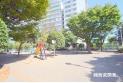 【公園】深町児童公園 約350m
