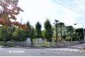 【小学校】新座小学校 約700m