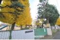 【小学校】野火止小学校 約300m