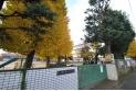 【小学校】野火止小学校 約500m