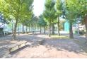 【公園】北野公園 約480m