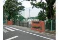 【小学校】大泉学園小学校 約700m