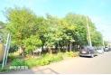 【その他】東野緑地 約780m