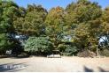 【公園】広沢原児童公園広場 約900m
