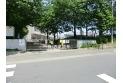 【小学校】第十小学校 約500m