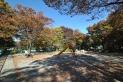 【公園】成増北第一公園 約650m