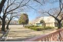 【小学校】成増小学校 約130m